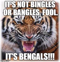 Bengals