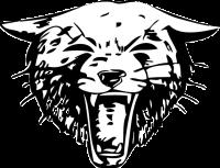 bearcat logo3