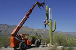 camouflage-cell-phone-towers-13