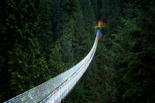 Capilano-Suspension-Bridge (1)