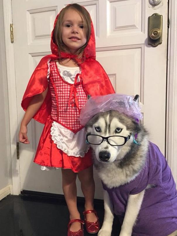 halloween-dog-costumes-111-57fde552c3acb__605