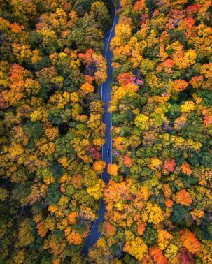 vermont-drone-over-smugglers-notch-by-michael-matti-581b62f29f231__880