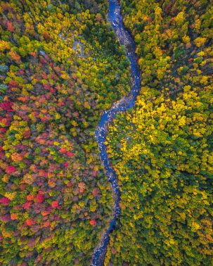 west-virginia-drone-over-fall-colors-by-michael-matti-581b629b74211__880