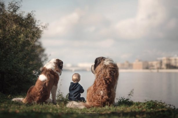 little-kids-big-dogs-friendship-photography-andy-seliverstoff-11-5866182aaa1ae__880