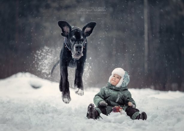 little-kids-big-dogs-friendship-photography-andy-seliverstoff-13-5866182d83a5b__880