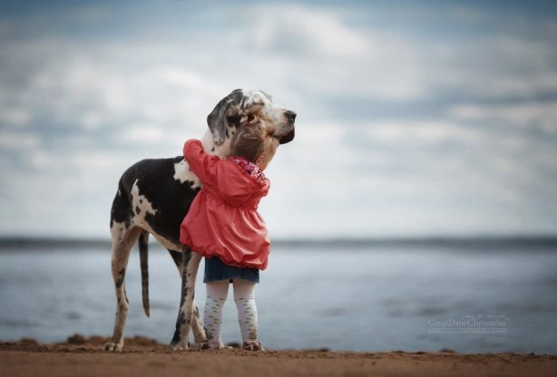 little-kids-big-dogs-friendship-photography-andy-seliverstoff-14-5866183005a9a__880