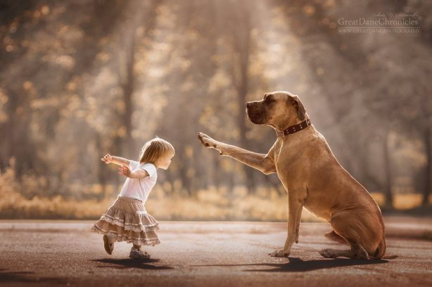 little-kids-big-dogs-friendship-photography-andy-seliverstoff-3-5866181d2258c__880