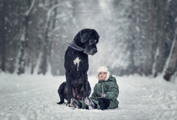 little-kids-big-dogs-friendship-photography-andy-seliverstoff-4-5866181ecf09d__880