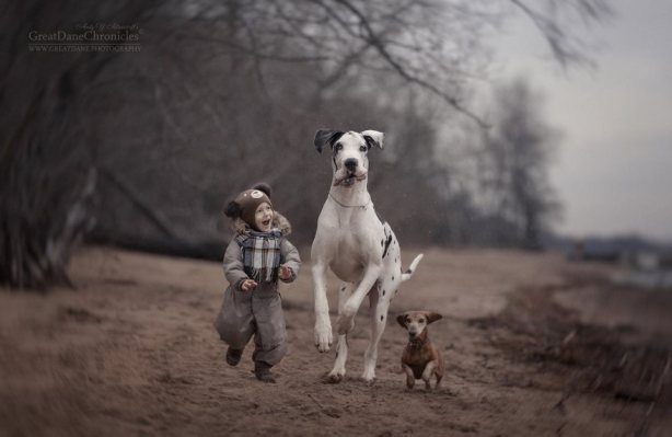 little-kids-big-dogs-friendship-photography-andy-seliverstoff-6-5866182244c44__880