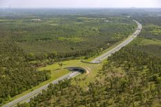 bridges-for-animals-around-the-world-58a473febd486-jpeg__880autobahn
