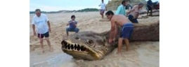 supposedly-found-off-the-shores-of-the-philippines-some-believe-this-photo-to-be-a-hoax