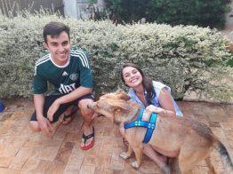 stray-dog-crash-wedding-matheus-marilia-pieroni-7-1