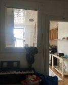 cat-hiding-photo-pierogi-grace-spelman-11-5a3133ccb6504__700