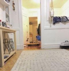 cat-hiding-photo-pierogi-grace-spelman-12-5a3133ce945f6__700