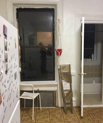 cat-hiding-photo-pierogi-grace-spelman-13-5a3133d14f3ef__700
