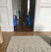 cat-hiding-photo-pierogi-grace-spelman-17-5a3133d924bb9__700