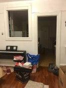 cat-hiding-photo-pierogi-grace-spelman-7-5a3133c41b74c__700