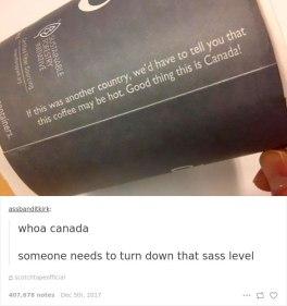funny-canada-jokes-memes-tumblr-5-5a2e2a9a955c7__700