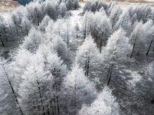 beautiful-winter-photos-naagaoshi-japan-1-5a55c92436475__880