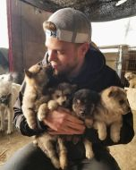 American-skier-saves-90-dogs-at-South-Korea-Olympics-5a95113bef43b__700