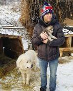 American-skier-saves-90-dogs-at-South-Korea-Olympics-5a951147853e1__700