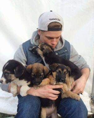 American-skier-saves-90-dogs-at-South-Korea-Olympics-5a9518e48884e__700