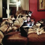 funny-hungry-dogs-begging-food-35-5b44b095bab47__605