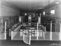 From 1916, the first self-serve grocery store. It was an idea that was here to stay.