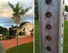 treesign