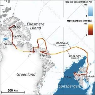 arcticmap