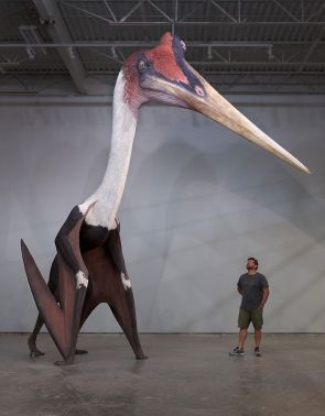 This is a Quetzalcoatlus Northropi, the largest known flying mammal. Horrifying.